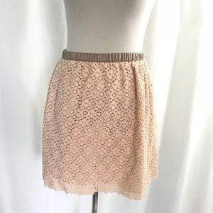 J. Crew Pink Blush Lace Skirt 6